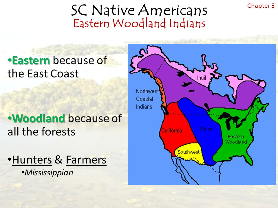 Eastern because of the East Coast Woodland because of all the forests Hunters & Farmers Mississippian SC Native Americans Eastern Woodland Indians Chapter 3