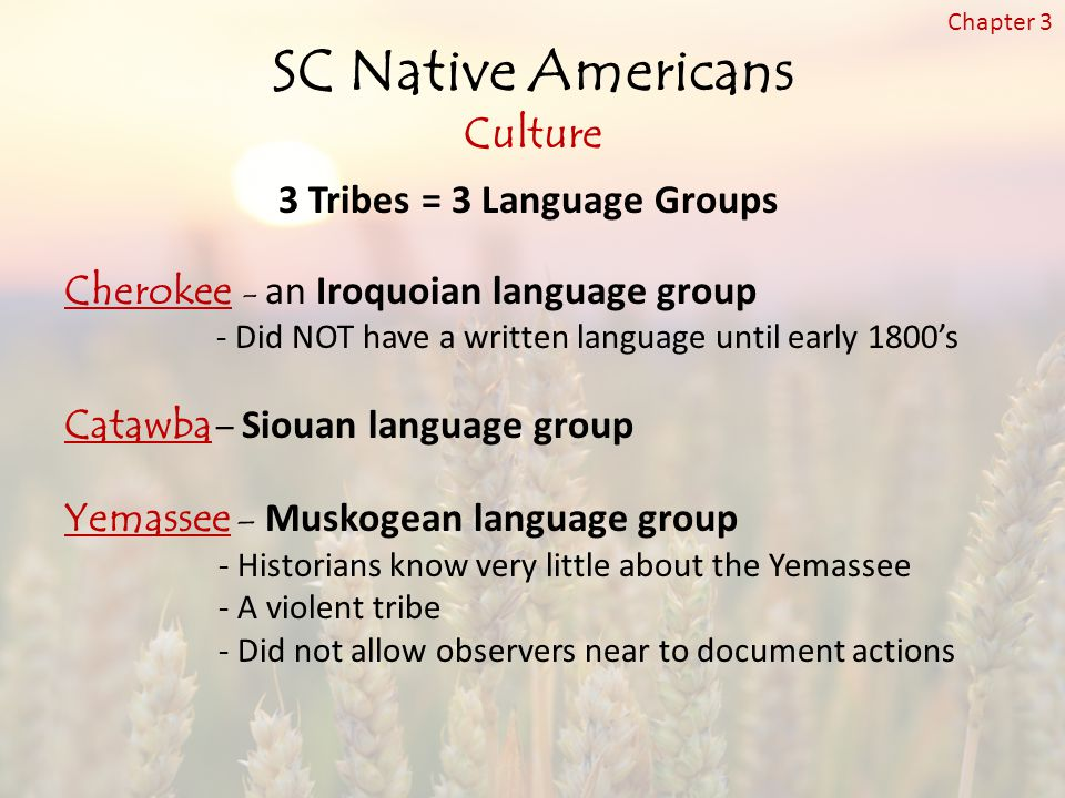 SC Native Americans Culture 3 Tribes = 3 Language Groups Cherokee - an Iroquoian language group - Did NOT have a written language until early 1800's Catawba – Siouan language group Yemassee – Muskogean language group - Historians know very little about the Yemassee - A violent tribe - Did not allow observers near to document actions Chapter 3
