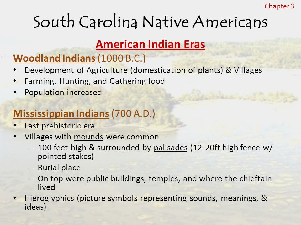 South Carolina Native Americans American Indian Eras Woodland Indians (1000 B.C.) Development of Agriculture (domestication of plants) & Villages Farming, Hunting, and Gathering food Population increased Mississippian Indians (700 A.D.) Last prehistoric era Villages with mounds were common – 100 feet high & surrounded by palisades (12-20ft high fence w/ pointed stakes) – Burial place – On top were public buildings, temples, and where the chieftain lived Hieroglyphics (picture symbols representing sounds, meanings, & ideas) Chapter 3