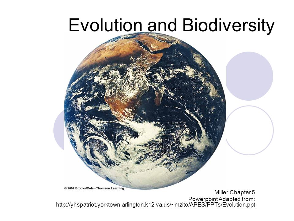 What's This Niche Stuff Got to do with Evolution and Biodiversity.