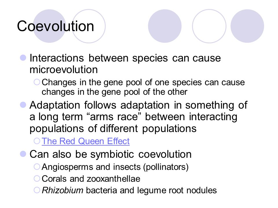 Coevolution Interactions between species can cause microevolution  Changes in the gene pool of one species can cause changes in the gene pool of the