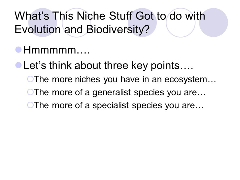 What's This Niche Stuff Got to do with Evolution and Biodiversity? Hmmmmm…. Let's think about three key points….  The more niches you have in an ecos