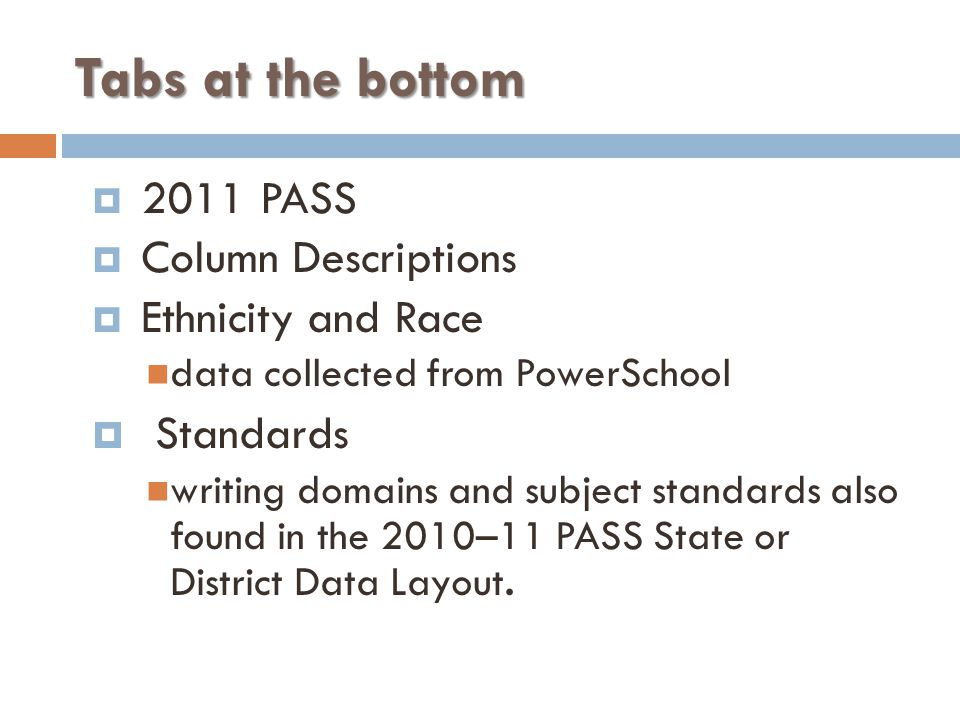 Tabs at the bottom  2011 PASS  Column Descriptions  Ethnicity and Race data collected from PowerSchool  Standards writing domains and subject standards also found in the 2010–11 PASS State or District Data Layout.