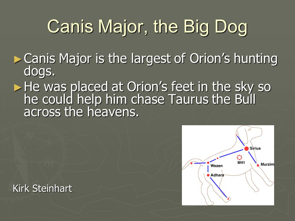 Canis Major, the Big Dog ► Canis Major is the largest of Orion's hunting dogs.