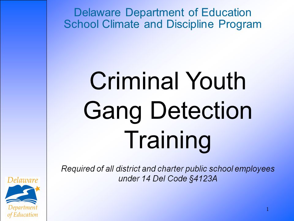 22 Delaware Code Title 11 § 617 Criminal Youth Gangs (a) Definitions.