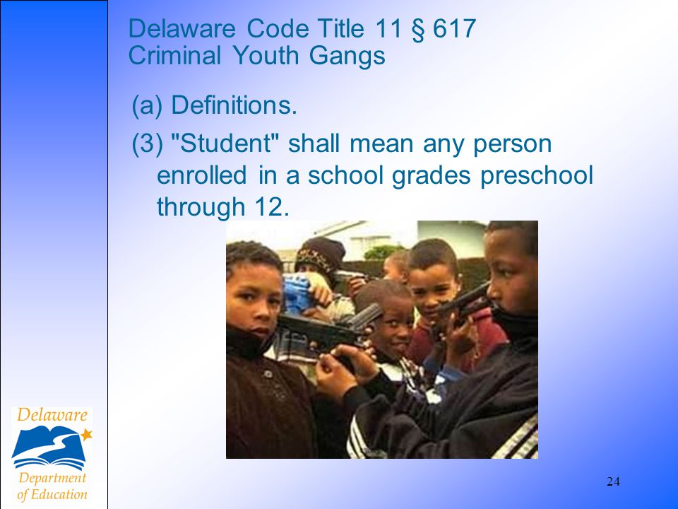24 Delaware Code Title 11 § 617 Criminal Youth Gangs (a) Definitions. (3)