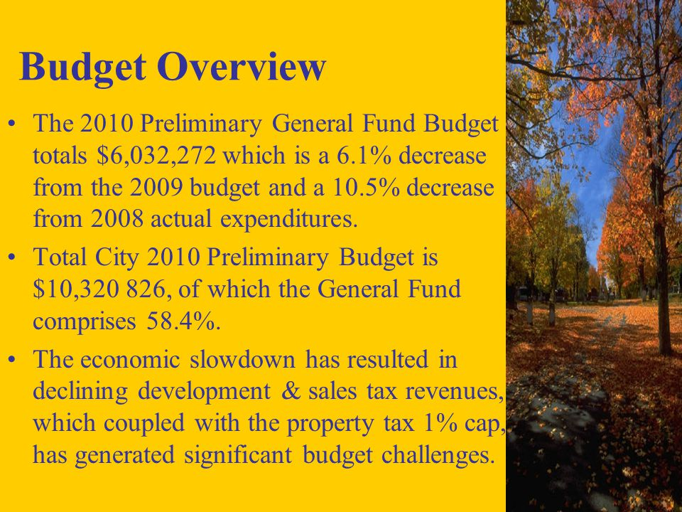 Budget Overview The 2010 Preliminary General Fund Budget totals $6,032,272 which is a 6.1% decrease from the 2009 budget and a 10.5% decrease from 2008 actual expenditures.