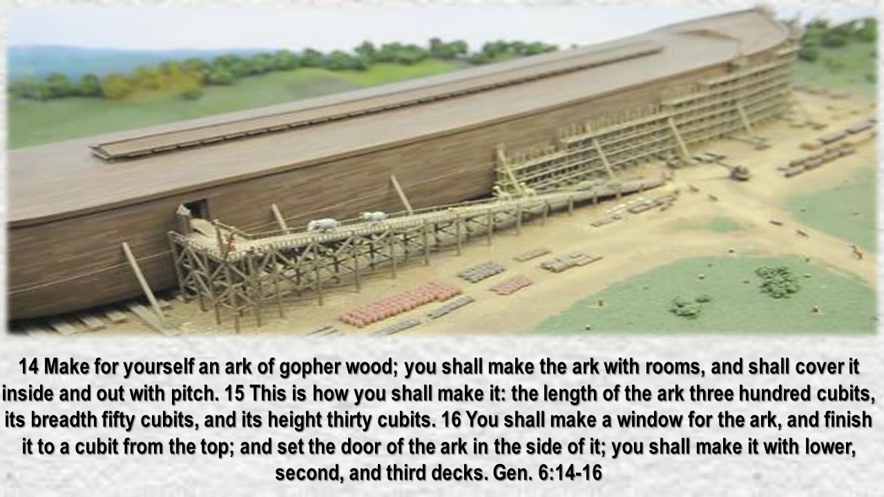 14 Make for yourself an ark of gopher wood; you shall make the ark with rooms, and shall cover it inside and out with pitch. 15 This is how you shall