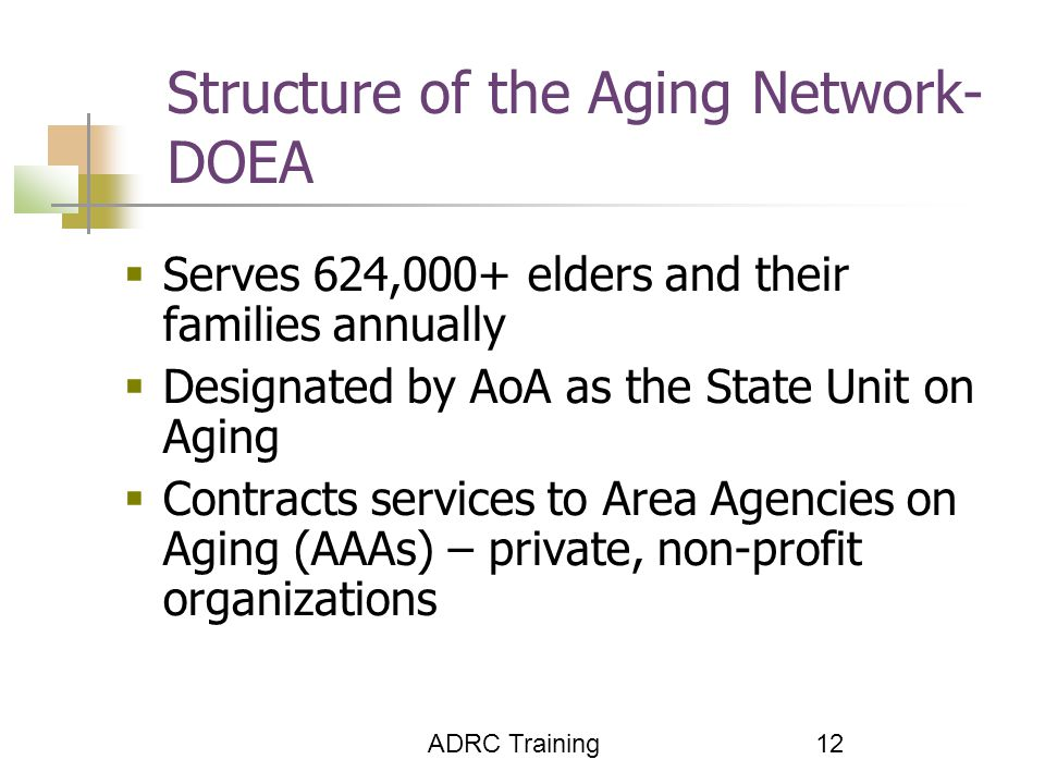 ADRC Training 12 Structure of the Aging Network- DOEA  Serves 624,000+ elders and their families annually  Designated by AoA as the State Unit on Aging  Contracts services to Area Agencies on Aging (AAAs) – private, non-profit organizations