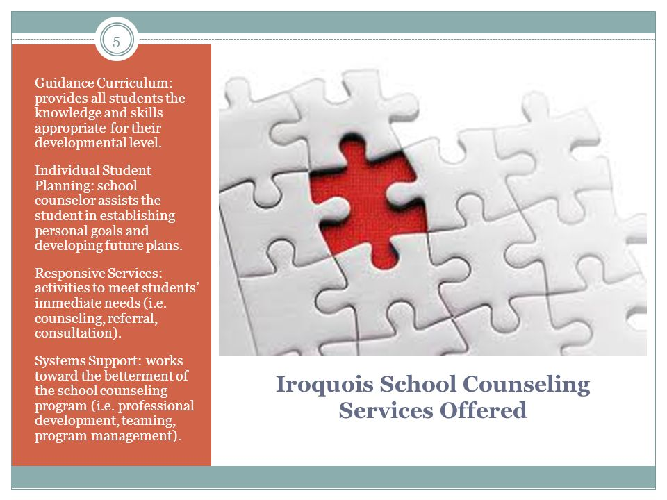 5 Iroquois School Counseling Services Offered Guidance Curriculum: provides all students the knowledge and skills appropriate for their developmental level.