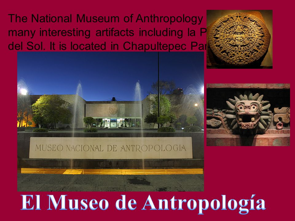 The National Museum of Anthropology has many interesting artifacts including la Piedra del Sol.