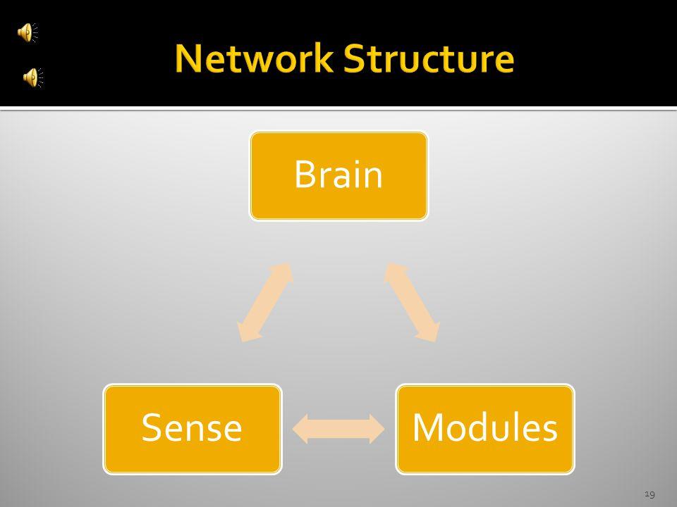 19 BrainModulesSense