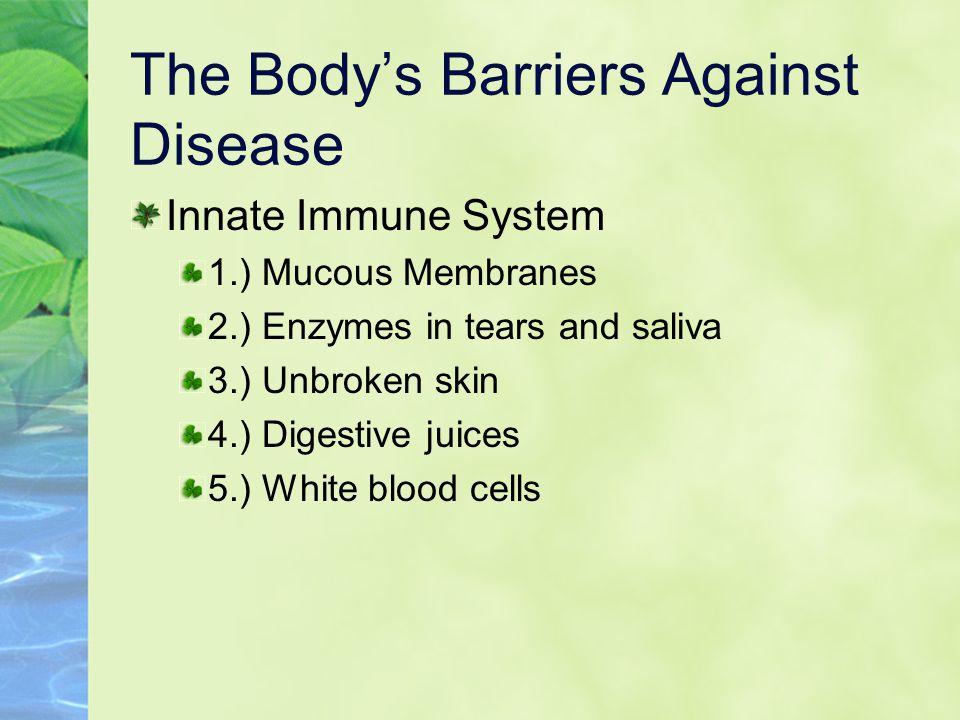 Barriers, cont. Adaptive Immune System 1.) Lymphocytes T cells B cells