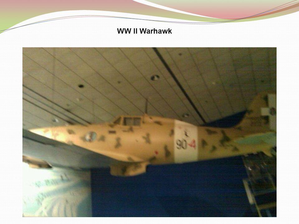 WW II Warhawk