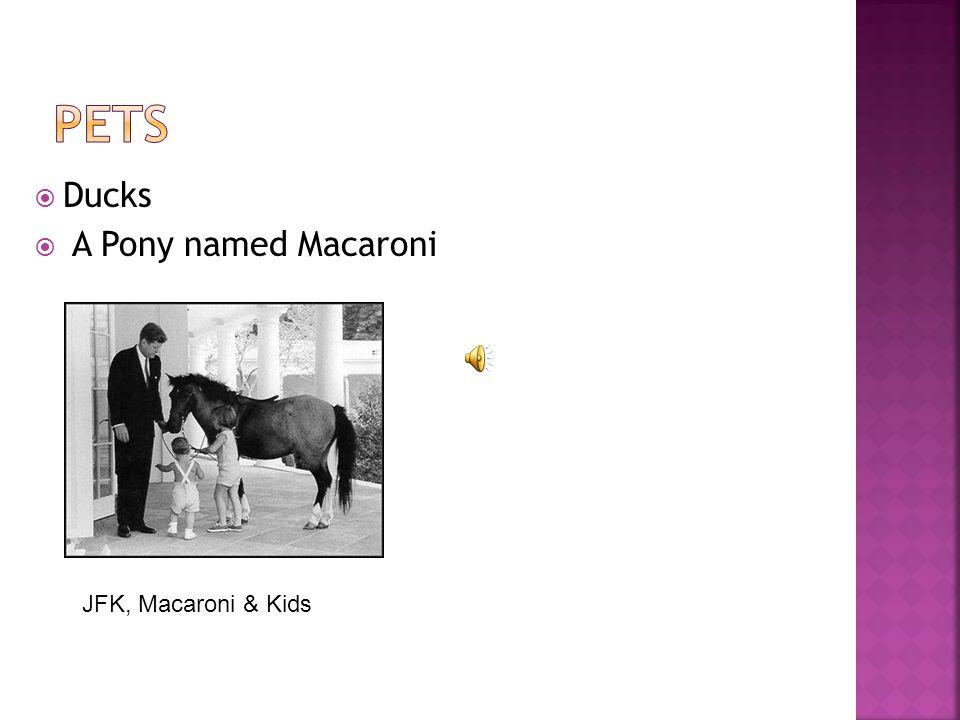  Ducks  A Pony named Macaroni JFK, Macaroni & Kids