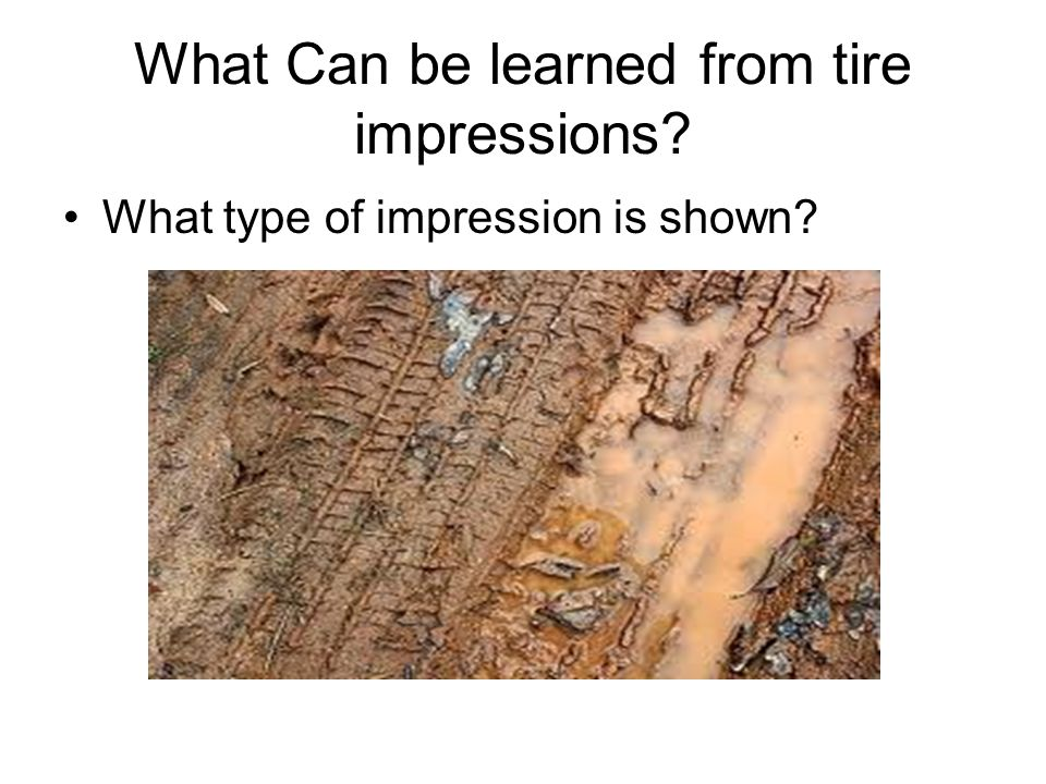 What Can be learned from tire impressions What type of impression is shown
