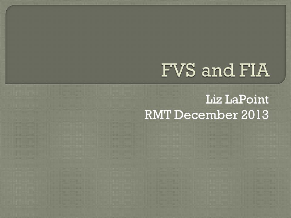 Liz LaPoint RMT December 2013