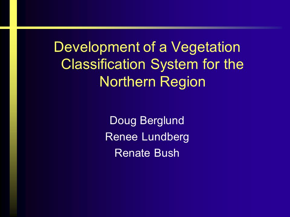 Development of a Vegetation Classification System for the Northern Region Doug Berglund Renee Lundberg Renate Bush
