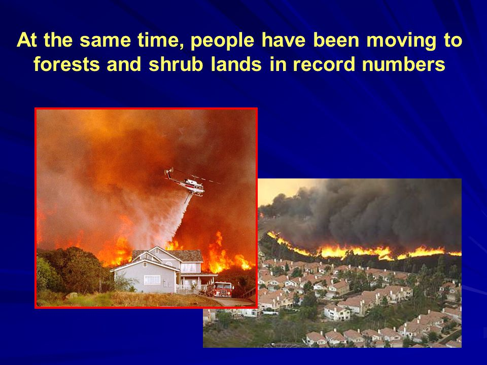 At the same time, people have been moving to forests and shrub lands in record numbers