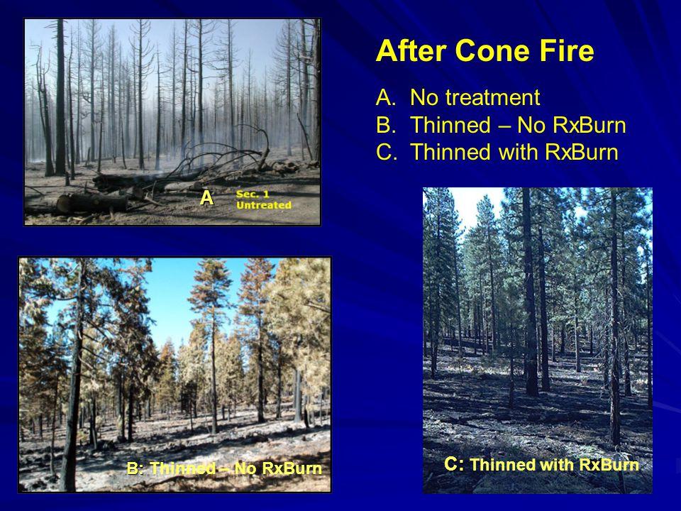 A.No treatment B.Thinned – No RxBurn C.Thinned with RxBurn After Cone Fire A B: B: Thinned – No RxBurn C: C: Thinned with RxBurn