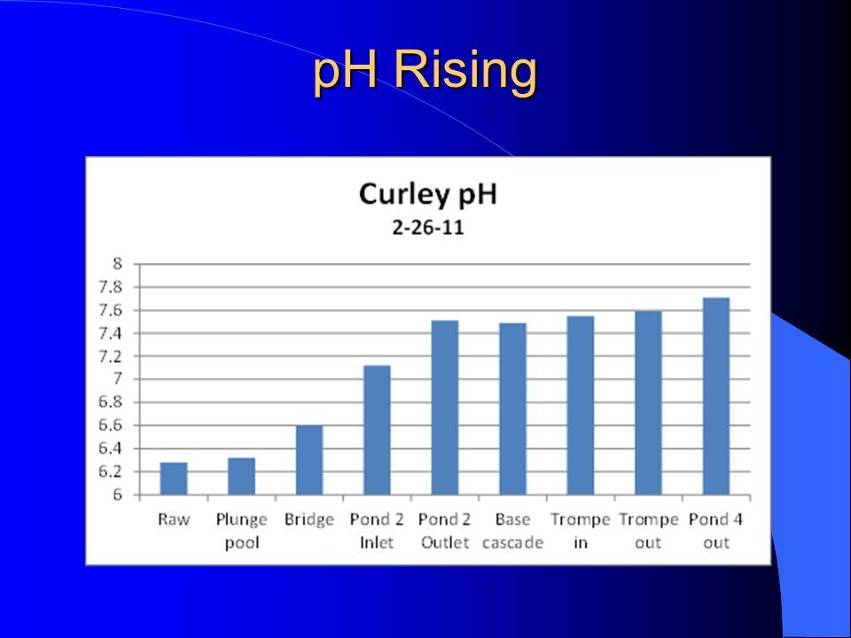pH Rising