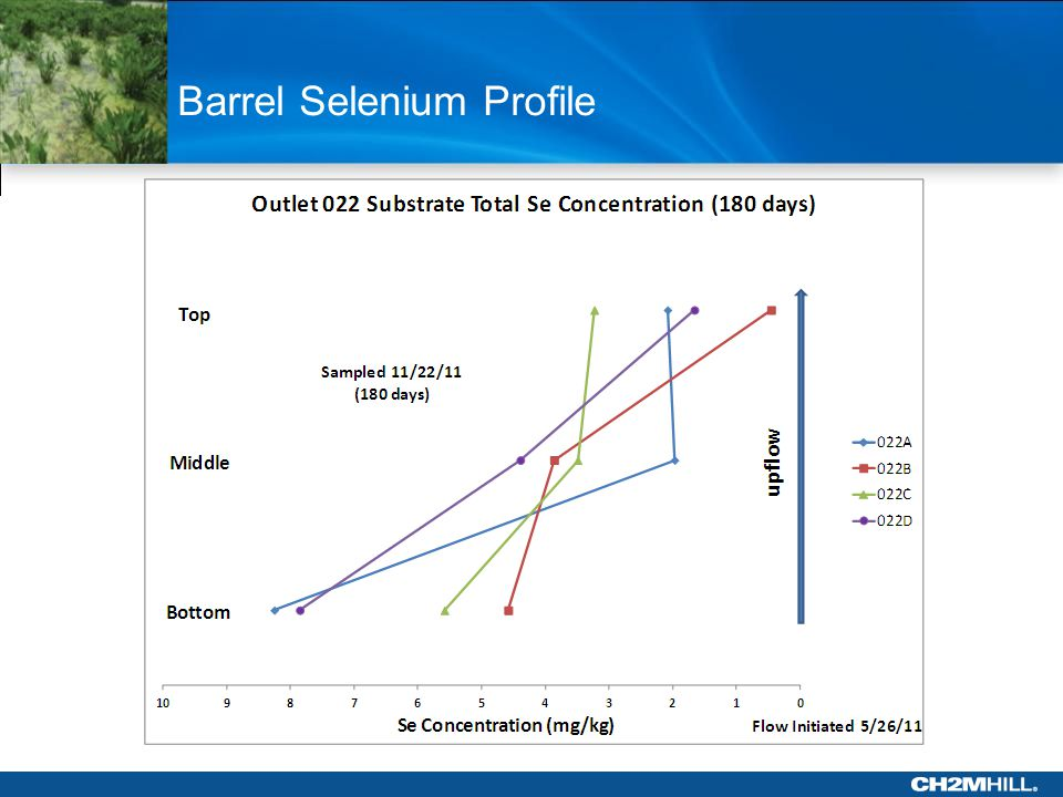 Barrel Selenium Profile