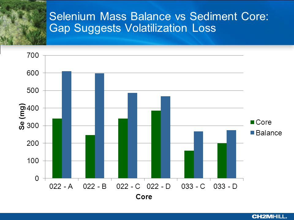 Selenium Mass Balance vs Sediment Core: Gap Suggests Volatilization Loss