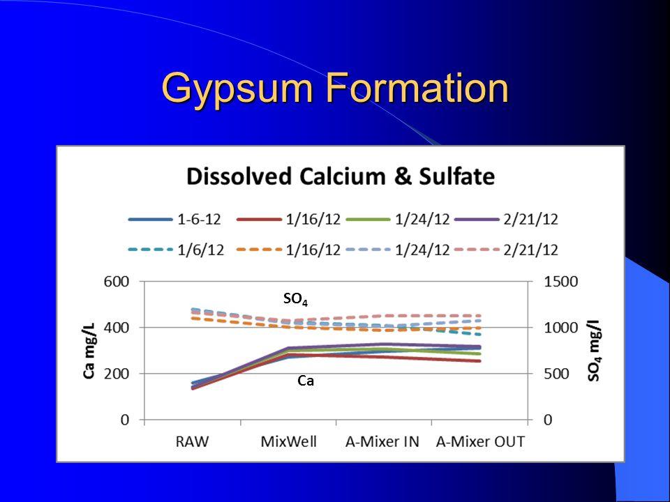Gypsum Formation Ca SO 4
