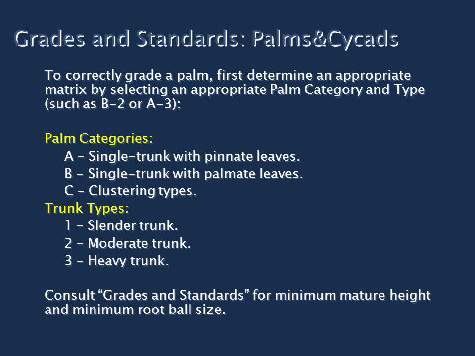 Grades and Standards: Palms&Cycads To correctly grade a palm, first determine an appropriate matrix by selecting an appropriate Palm Category and Type (such as B-2 or A-3): Palm Categories: A – Single-trunk with pinnate leaves.