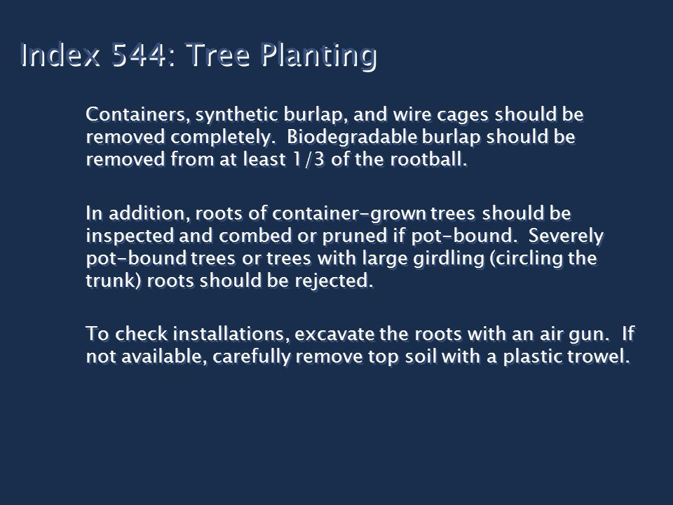 Index 544: Tree Planting Containers, synthetic burlap, and wire cages should be removed completely.