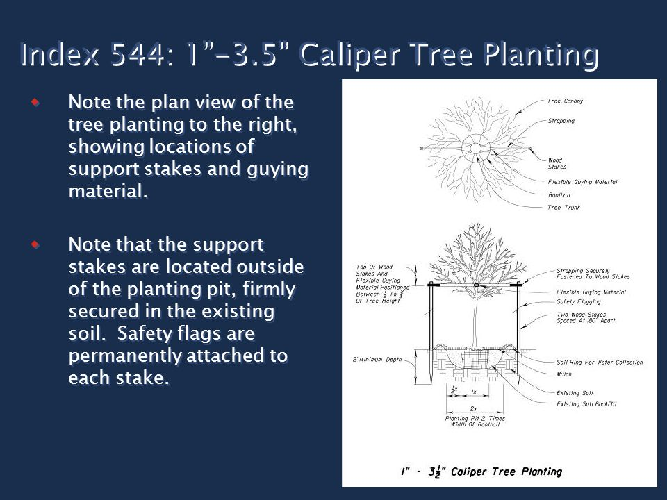 "Index 544: 1""-3.5"" Caliper Tree Planting  Note the plan view of the tree planting to the right, showing locations of support stakes and guying materi"