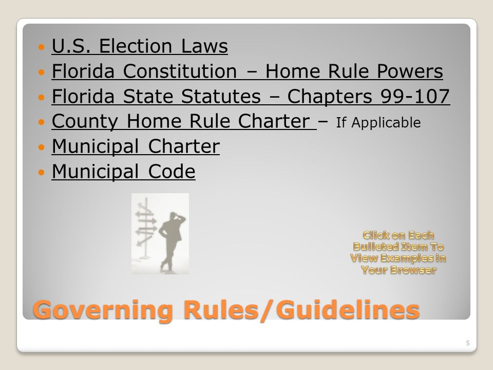 Governing Rules/Guidelines U.S. Election Laws Florida Constitution – Home Rule Powers Florida State Statutes – Chapters 99-107 County Home Rule Charte