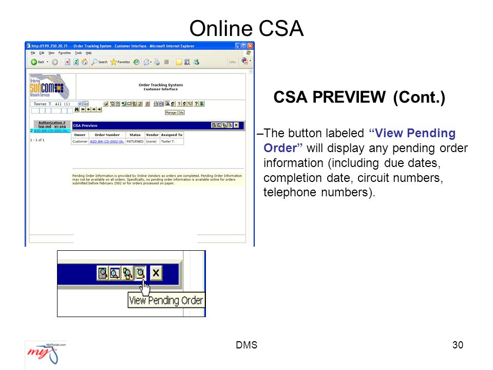 DMS30 Online CSA CSA PREVIEW (Cont.) –The button labeled View Pending Order will display any pending order information (including due dates, completion date, circuit numbers, telephone numbers).