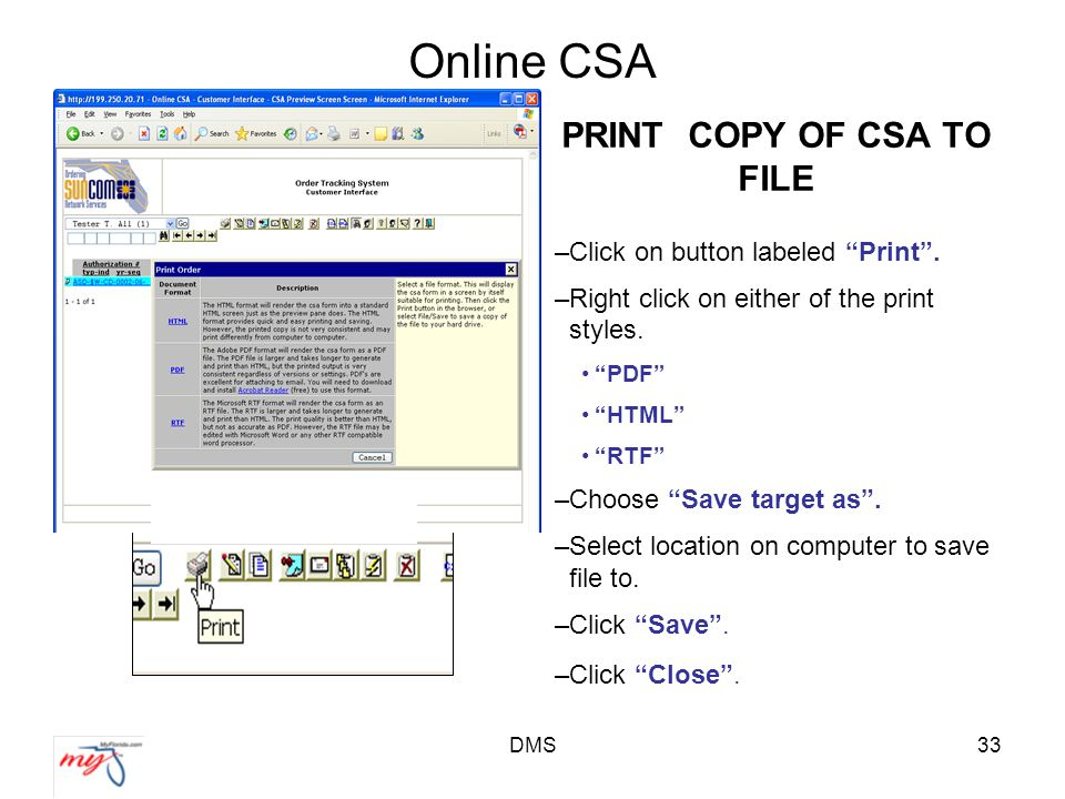 DMS33 Online CSA PRINT COPY OF CSA TO FILE –Click on button labeled Print .