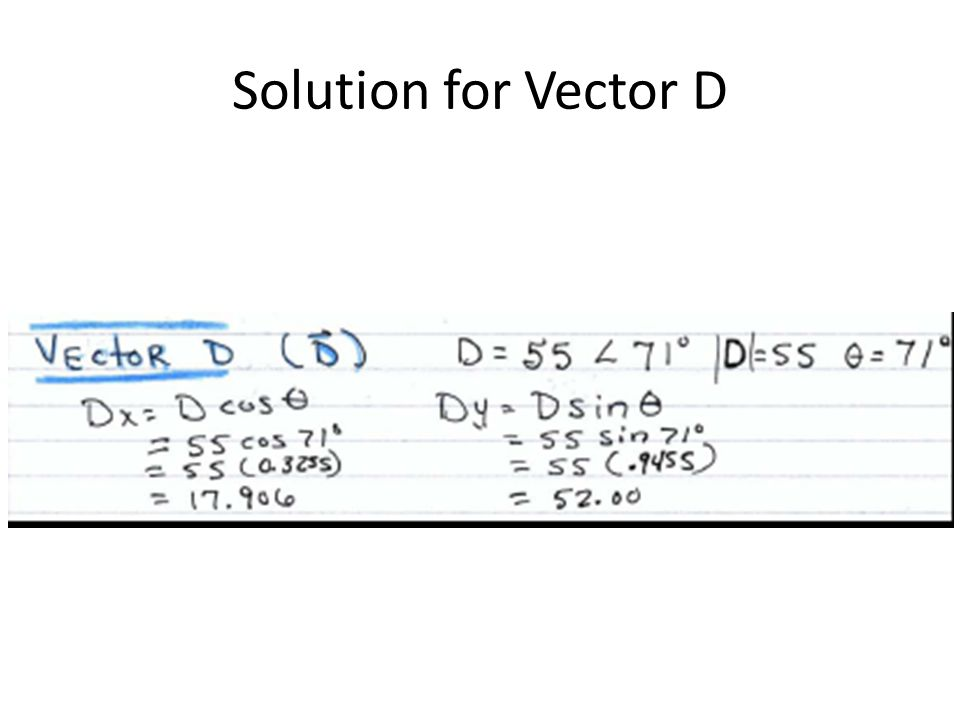 Solution for Vector D