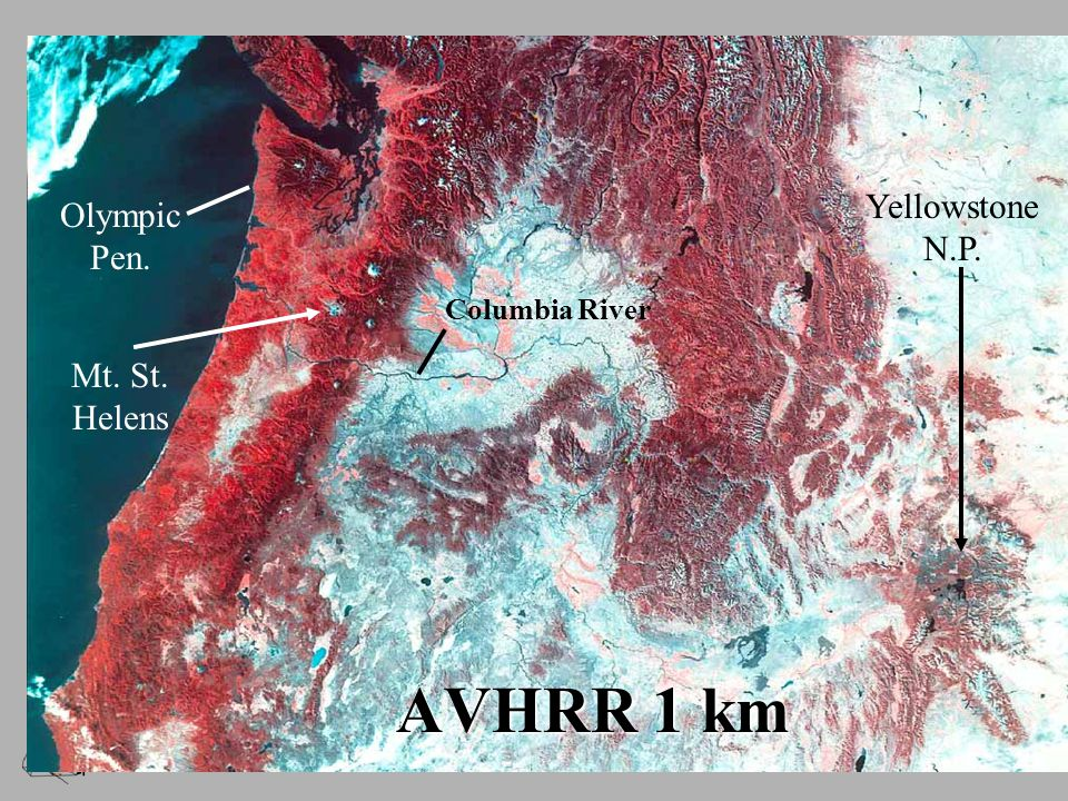 AVHRR 1 km Columbia River Olympic Pen. Yellowstone N.P. Mt. St. Helens