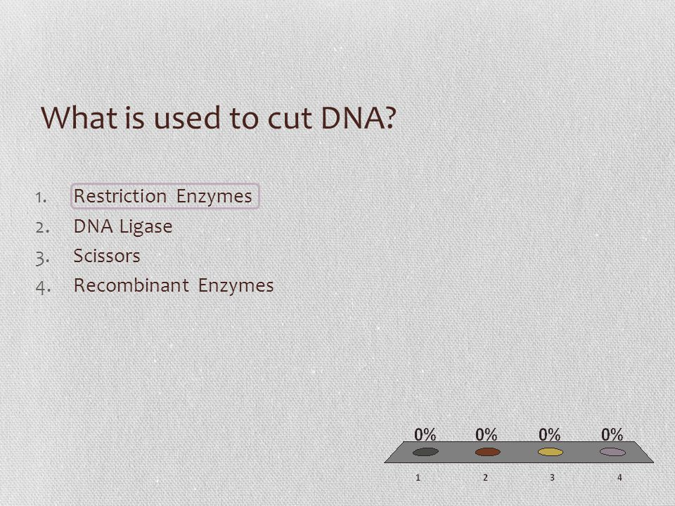 What is used to cut DNA 1.Restriction Enzymes 2.DNA Ligase 3.Scissors 4.Recombinant Enzymes