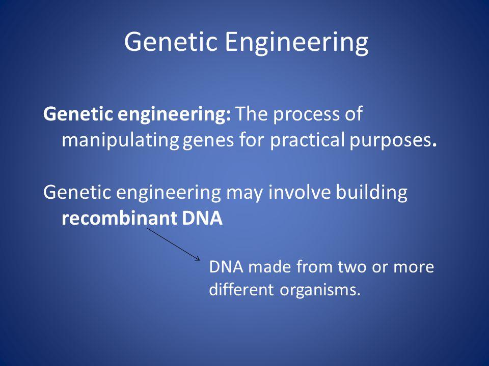 Genetic Engineering Genetic engineering: The process of manipulating genes for practical purposes. Genetic engineering may involve building recombinan