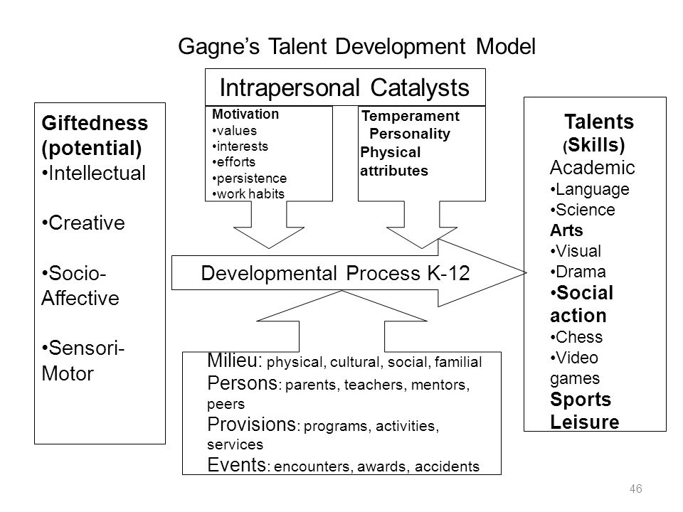 46 Developmental Process K-12 Intrapersonal Catalysts Motivation values interests efforts persistence work habits Temperament Personality Physical att