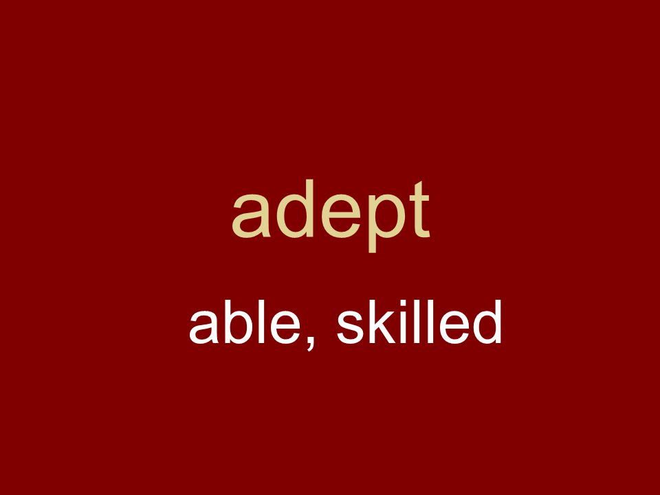 adept able, skilled