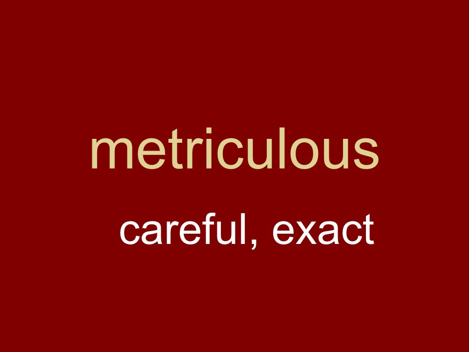 metriculous careful, exact