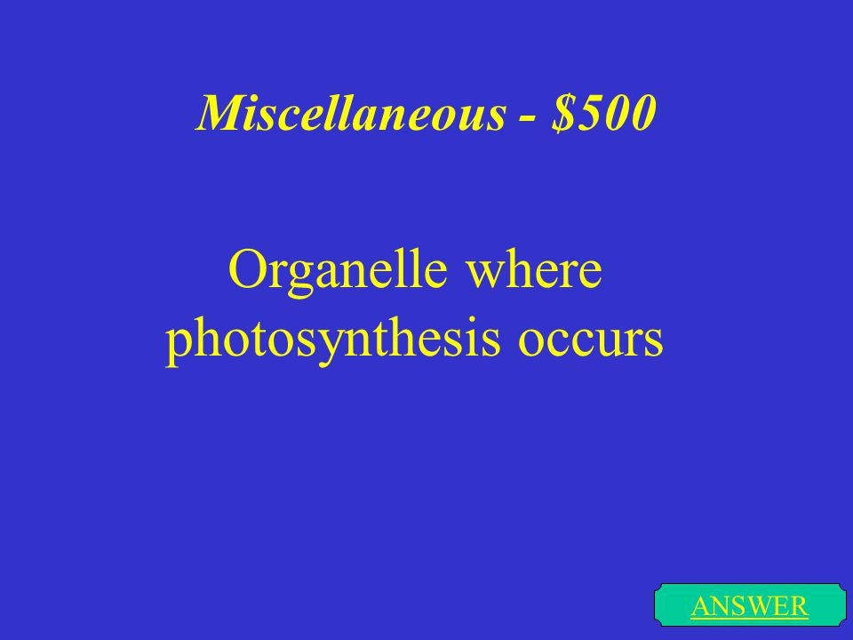 Miscellaneous - $400 ANSWER The chemical needed for photosynthesis to occur