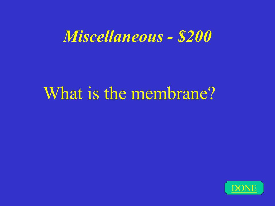 Miscellaneous - $100 DONE What is the nucleus