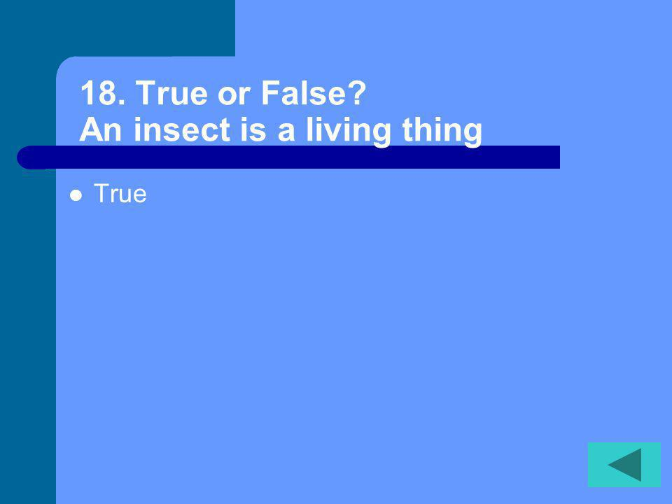 17. True or False A glacier is made of salt water False