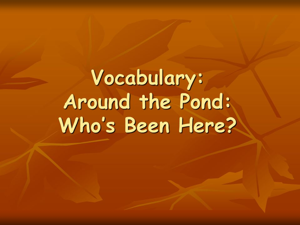 Vocabulary: Around the Pond: Who's Been Here?