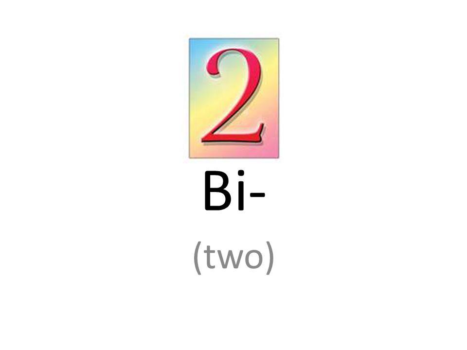 Bi- (two)