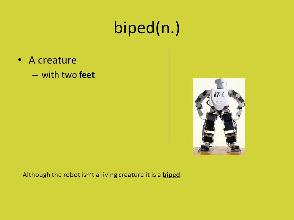 biped(n.) A creature – with two feet Although the robot isn't a living creature it is a biped.