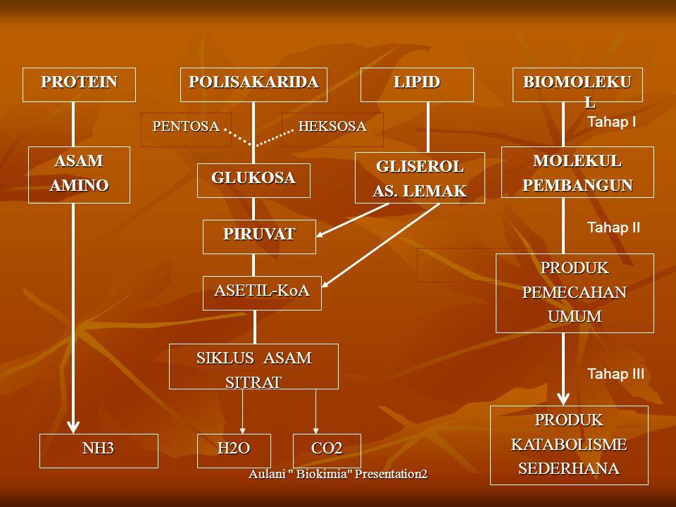 Aulani Biokimia Presentation2 PROTEINPOLISAKARIDALIPID BIOMOLEKU L ASAMAMINO GLUKOSA GLISEROL AS.