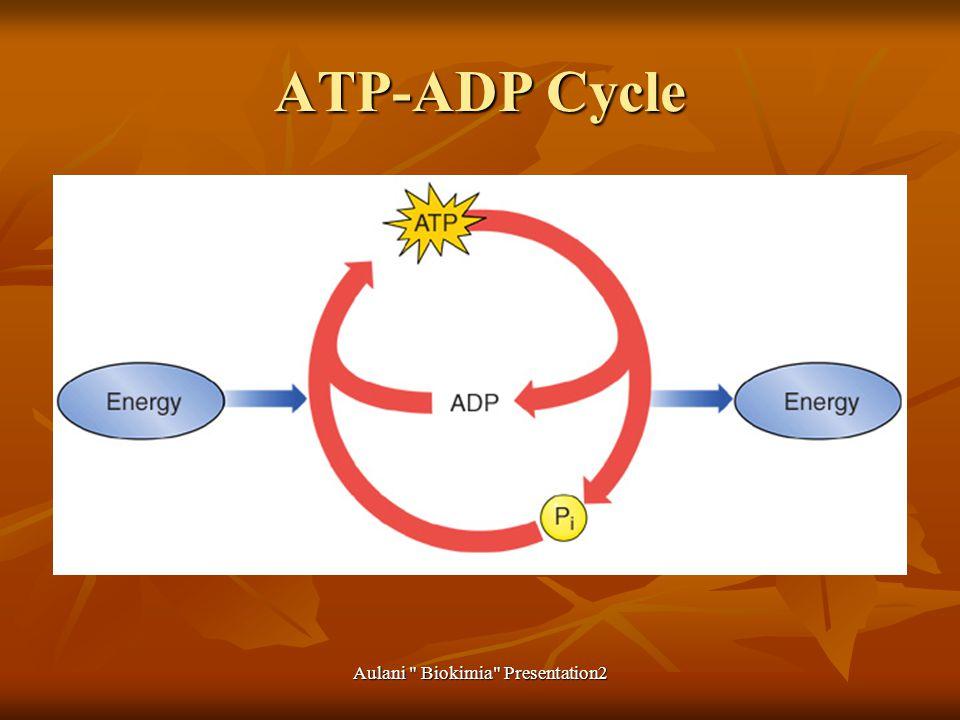 Aulani Biokimia Presentation2 ATP-ADP Cycle