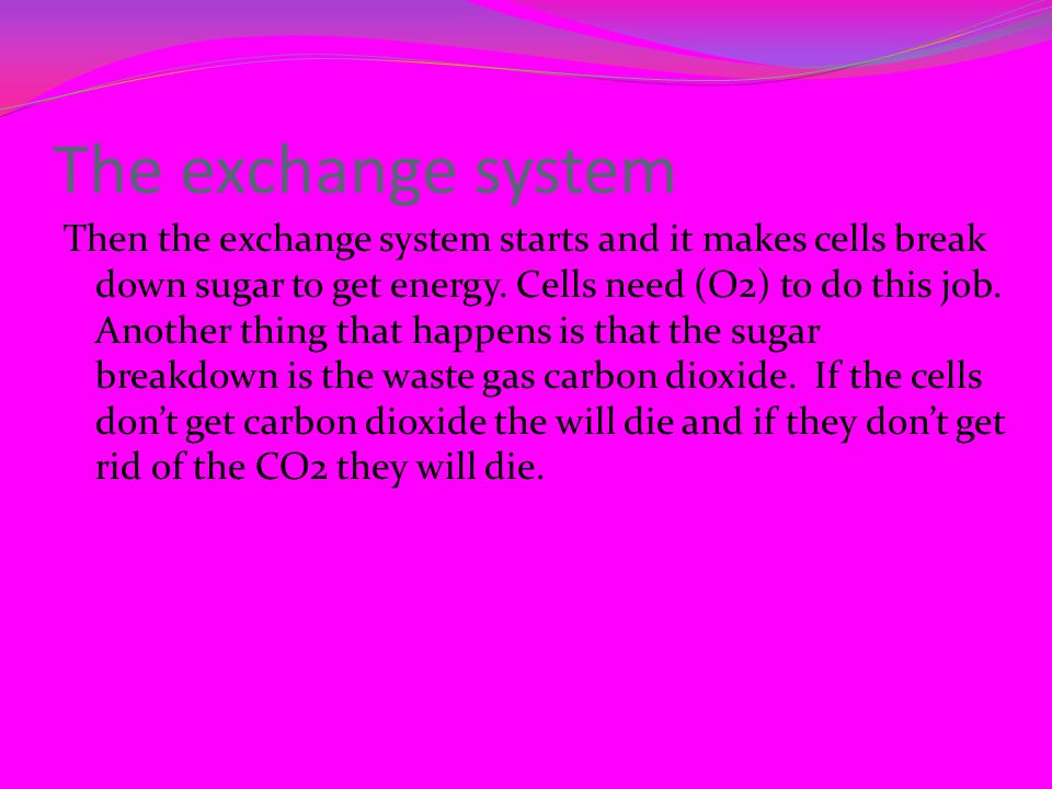 The exchange system Then the exchange system starts and it makes cells break down sugar to get energy.